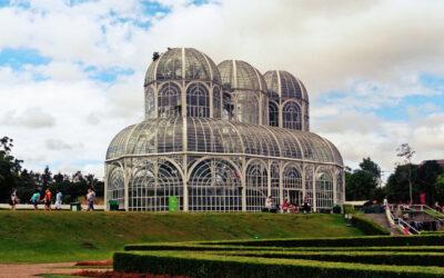Plano de saúde para empresas em Curitiba